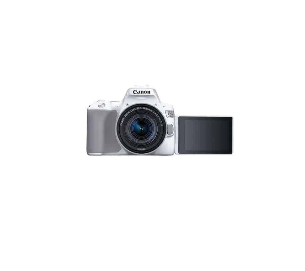 Canon 250D fotokaamera rent