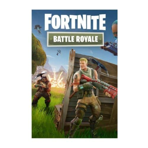 PS4 Fortnite Battle Royale